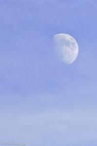 Daytime moon over Montana