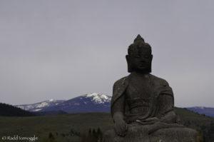Buddha sits serene