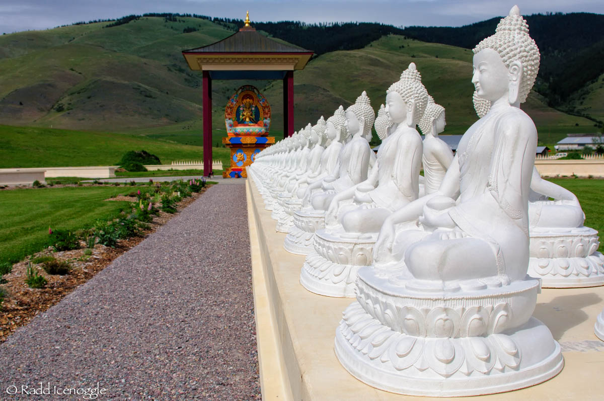 Preparing The Garden Of 1000 Buddhas