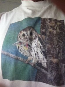 The best view of a Flammulated Owl...my fav t-shirt